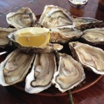 bretagne-cancale-ostron-oysters-travelgrip